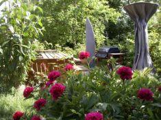 Fleurs Champ Bouchon