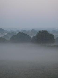Brume sur les champs